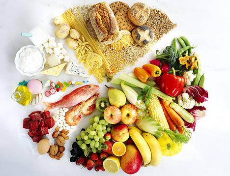 proteines-vegetales-animales