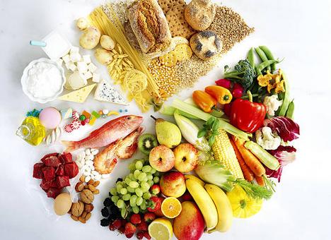 Protéines animales et végétales : quelles différences ?